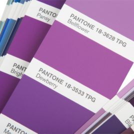 Pantone color guide book FHIP110N